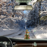 Driving for a Christmas Tree