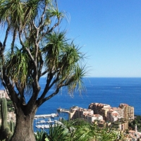 Monaco - Exotic Garden-Part 2