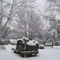 Timisoara, o zi de iarna