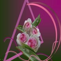 Compozitions florales