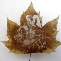 Dessins sur feuilles