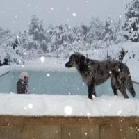 La région PACA-hiver 2012