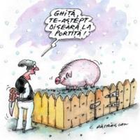 amatorii de caricaturi trasnite