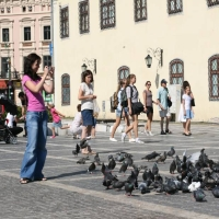 copii si porumbei