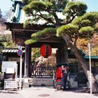 Le Japon en images