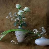 Accepte mes fleurs