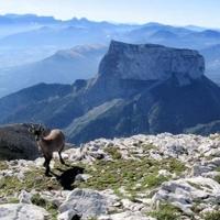 Beauté des montagnes en France N°1