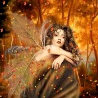 L'ange du soir