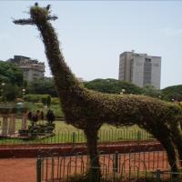 www.nicepps.ro_9981_India_Mumbai_Hanging Garden