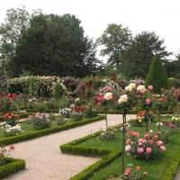 Gradina de trandafiri Bagatelle