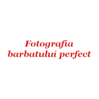 Fotografia barbatului ideal