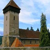 Voronet de Transilvania
