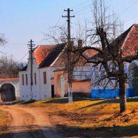 Biserica Fortificată Bruiu, Jud. Sibiu.