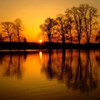 Magnific couche de la soleil