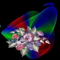 Images de fleurs....