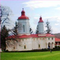 Mănăstirea Ciolanu. Jud. Buzău.