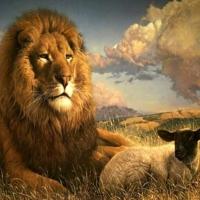 La multi ani celor nascuti in zodia Leului