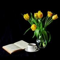 Flower - still - life - on - black