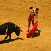 Pasion gitana y sangre espagnola