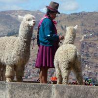 Le Pérou 2