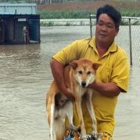 Regen en overstromingen in vele landen