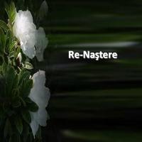 RE-NASTEREA