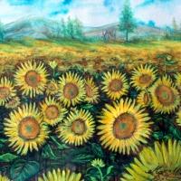 Pictand tabloul imagine cu un camp de floarea soarelui!