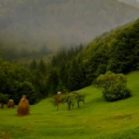 ROMANIA MEA, TARA CONTROVERSELOR