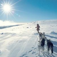 45_lectii_de_viata_in_imagini_superbe_din_Norvegia