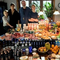 Alimentatie internationala