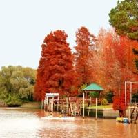 Autumn , Tango in Patagonia