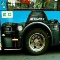 humor bus