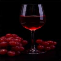 Proverbe dedicate celor ce tind să consume mult vin.