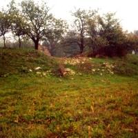 Castrul Praetorium-Mehadia, Jud. Caras Severin.