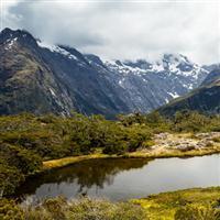 Noua Zeelanda in luna Decembrie