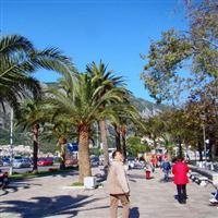 Adriatic Tur 010 De la Budva la Kotor
