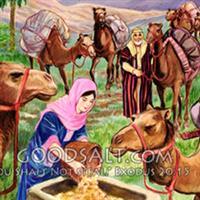 Capitolul 24 Partea II-a din Facerea – Biblie