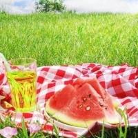 Summer_Picnic