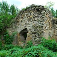 Cetatea Salasul De Sus, Jud. Hunedoara.