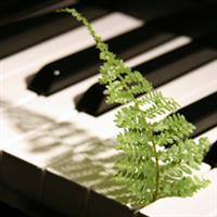 Pianul