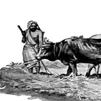 Capitolul 25 din Deuternomul - Biblie