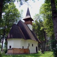 Manastirea Lupsa - I