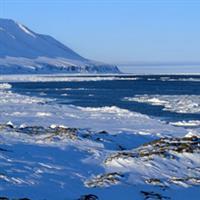cordiliera arctica