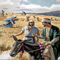 Capitolul 2 Partea II-a din Cartea Rut - Biblie