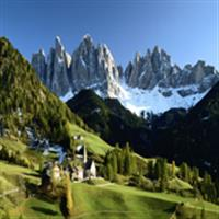 Alpii