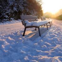 Pe o banca, iarna