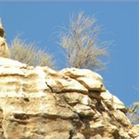 Iran Bishapur4