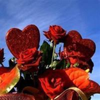 Frumosa iubire3