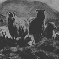 Psalmul 23 – Biblie