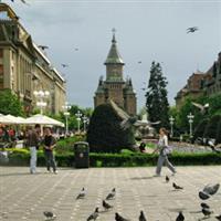 Orasu Timisoara